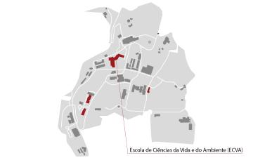 mapa ecav