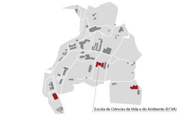 mapa ecva