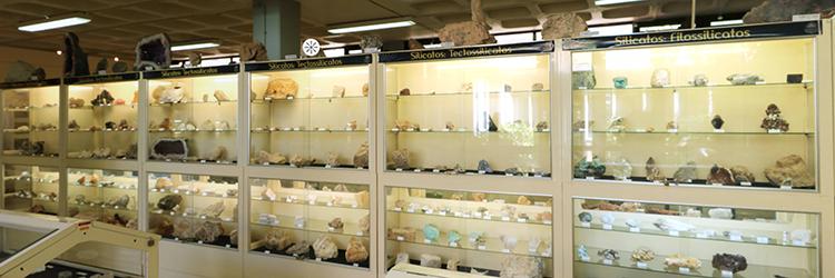 Museu 4