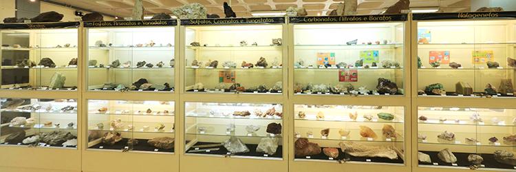 Museu 6
