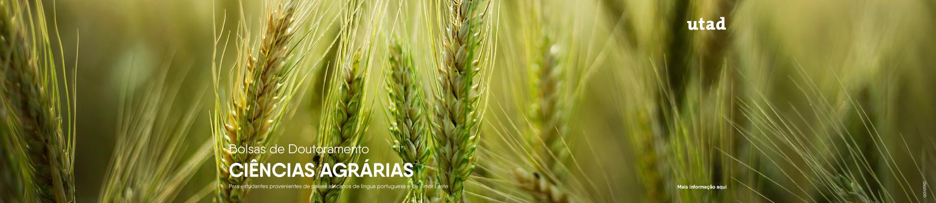 slider bolsas dout ciencias agrarias