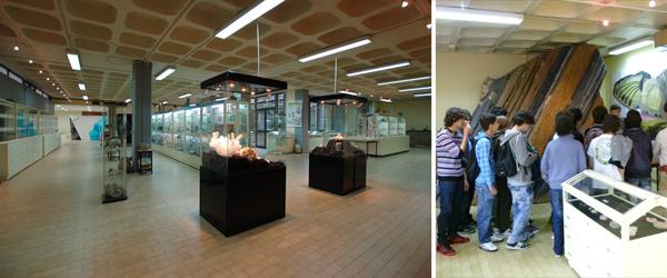 Foto: Museu e Escolas